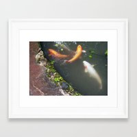 koi fish Framed Art Prints featuring Koi Fish by Elizabeth Boyajian