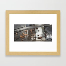 Puddle and Leaves Framed Art Print