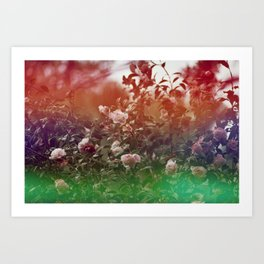 Flowers in Film, III Art Print