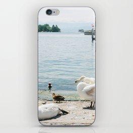 Swan Time! iPhone Skin