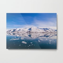 The World Above and Below the Ice Metal Print