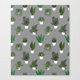 Houseplants Illustration (grey background) Canvas Print
