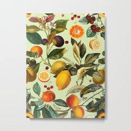 Vintage Fruit Pattern XIII Metal Print