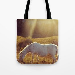 Pony grazing Tote Bag