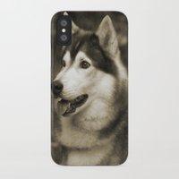 husky iPhone & iPod Cases featuring husky by Doug McRae