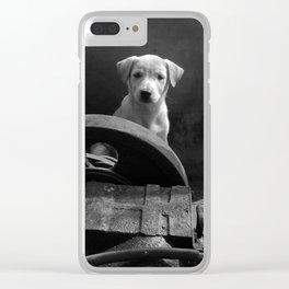 Junkyard stray bw Clear iPhone Case