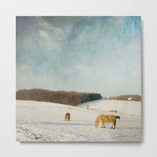 Horses on a Winter day Metal Print