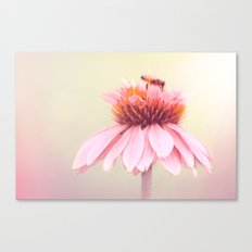 Wee Bee Canvas Print
