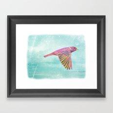 Rainbow Soar Framed Art Print