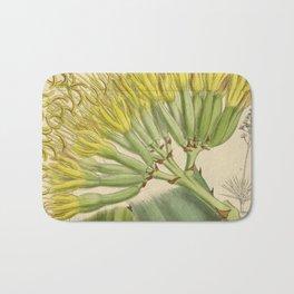 Agave fourcroydes, Asparagaceae, Agavoideae Bath Mat