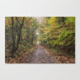 Autumn Cycle Path Canvas Print