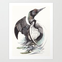 The Loon Art Print