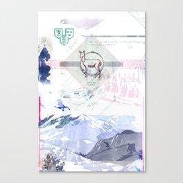 Viking Relics Canvas Print