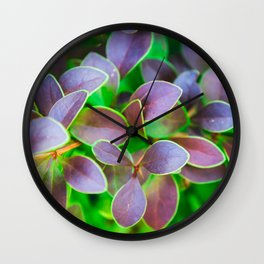 Vibrant green and purple leaves Wall Clock
