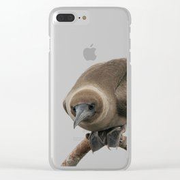 Curious young boobie Clear iPhone Case