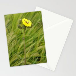 Always room for one more by Laila Cichos Stationery Cards