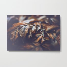 Autumn Leaves October Nature Metal Print