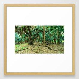 Wonderland.  Framed Art Print