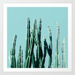 Green Cactus 7 Art Print