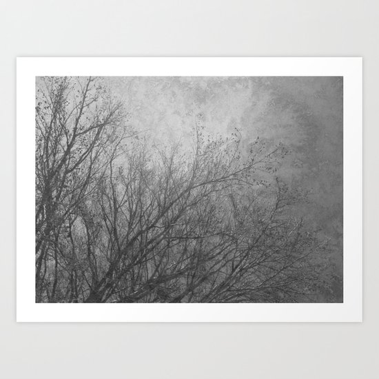 Winter trees 1 Art Print
