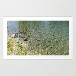 The Calm Along the River Art Print