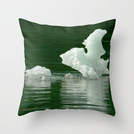 Alaskan Glacier's Exotic Pieces of Floating Ice Throw Pillow