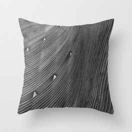 Copan Throw Pillow