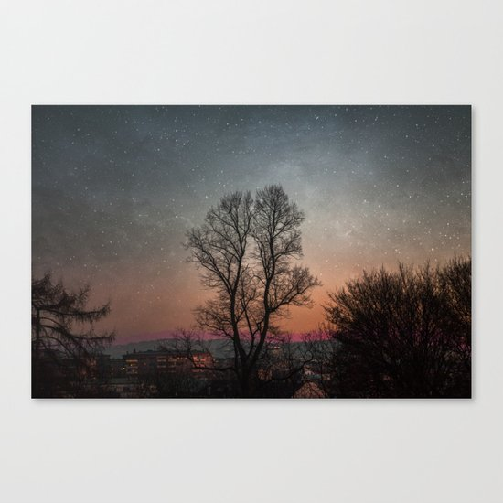 Starry Norwegian winter night Canvas Print