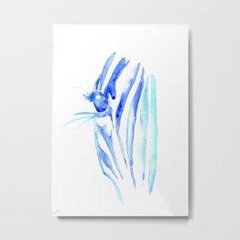 Blue Zebra Metal Print