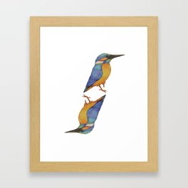 Kingfisher Framed Art Print