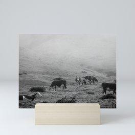 Misty Mountain Cows Mini Art Print