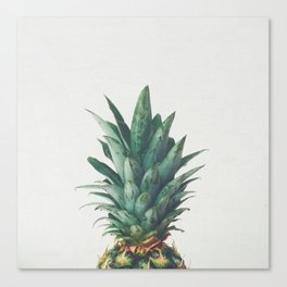 Pineapple Top Canvas Print