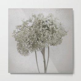 Annabelle Hydrangea - Pale Vintage Botanicals Metal Print