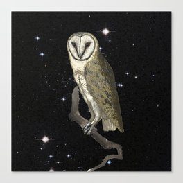 Owl in the Universe Canvas Print