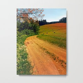 Hiking trail through springtime nature Metal Print