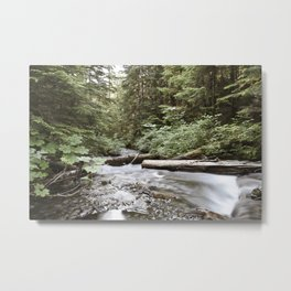And The Water Gorged The Wood Metal Print