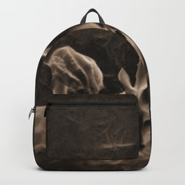 Doe And Fawn At Night Backpack