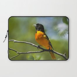 Orange Oriole Laptop Sleeve