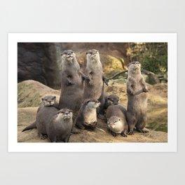 Otters Art Print