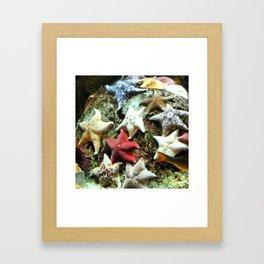STAR FISH Framed Art Print