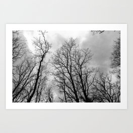 Creepy black and white trees Art Print