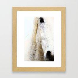 Waiting 2 - Horse Art By Sharon Cummings Framed Art Print