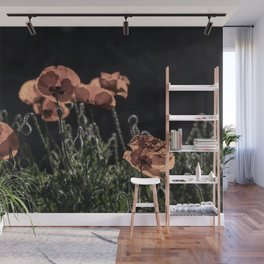 Poppies in the Sun Wall Mural