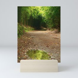 Puddle of water Mini Art Print