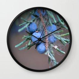 Macro Photography Blue Juniper Berries Wall Clock