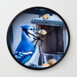 Blue Jay and the nuts Wall Clock