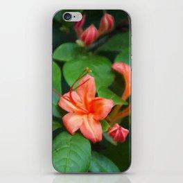 Floral Print 031 iPhone Skin