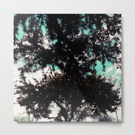 Meeting trees Metal Print