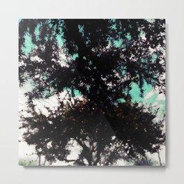 Meeting trees Metal Print