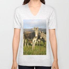 donkey band, donkey, photo, nature, perverse, band, field, lanscape Unisex V-Neck